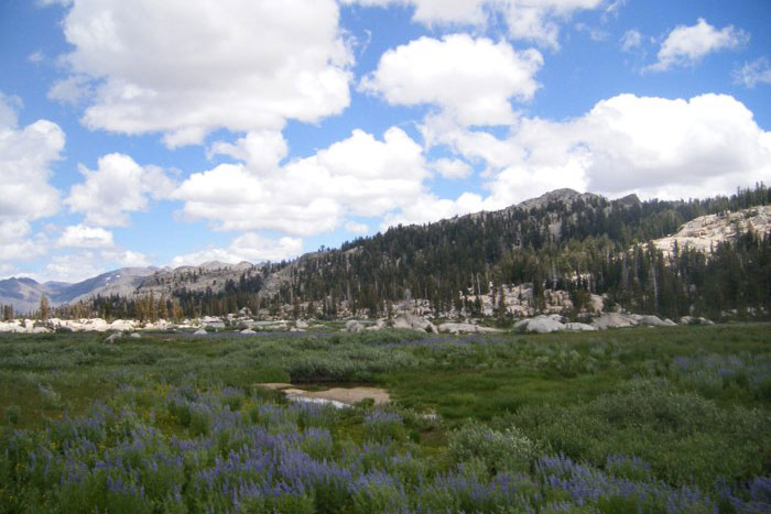 Upper Relief Valley